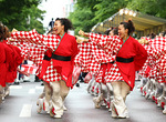 YOSAKOIソーラン祭り.jpg