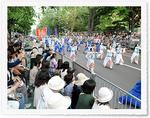 YOSAKOIソーラン祭り2.jpg